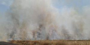 Türkiye-Suriye sınırında mayınlı alanda çıkan yangın buğday tarlalarına sıçradı