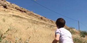 Kızıltepe'de kene ve haşerelere karşı doğaya 200 bıldırcın salındı