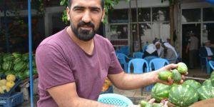 Viranşehir'de şelengo meyvesi tezgâhlardaki yerini aldı