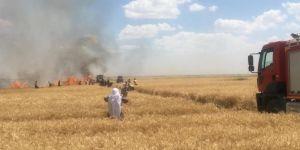 Kızıltepe'de biçerdöverden çıkan kıvılcım 60 dönüm buğday ekinini kül etti