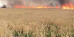 Kızıltepe'nin Sürekli Mahallesinde 300 dönümlük buğday tarlası küle döndü