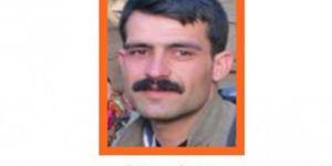 Turuncu kategoride aranan PKK'li Eren Karker kod adlı Ünal Dindar Bitlis'te öldürüldü