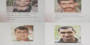 Tunceli'de öldürülen 4 PKK'li arananlar listesindeydi
