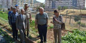 Turizm Bakan yardımcısı Sason'da incelemelerde bulundu