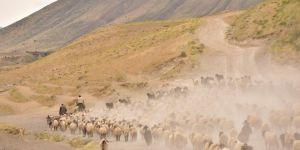 Van Gölü kıyılarından Nemrut'un eteklerine uzanan yolculuk