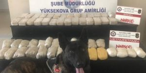 Yüksekova'da uyuşturucu madde ele geçirildi
