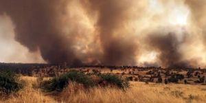 Mardin'de ormanlık alanda çıkan büyük yangın korkuttu