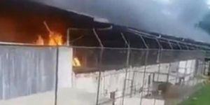 Brezilya'da hapishanede isyan: 52 mahkum öldü