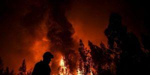 Rusya'da 3 milyon hektar ormanlık alan kül oldu