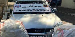 Nizip'te bahçeden fıstık çalan hırsızlar yakalandı
