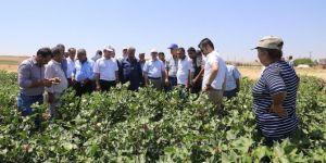 Diyarbakır Tarım ve Orman İl Müdürlüğünden Çınar'da çiftçilere ziyaret