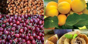 Türkiye 4 ürünün üretim ve ihracatında dünyada birinci sırada