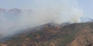 Kozluk'daki orman yangını söndürülemiyor