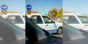 Eskişehir'de otomobilin çarptığı at metrelerce uçtu