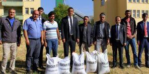 Bingöl'de çiftçilere tohum desteği