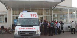 Kiğı'da ağaçtan düşen vatandaş hayatını kaybetti