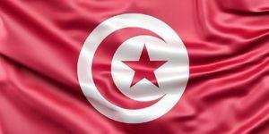 Tunus halkı sandık başında
