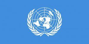 NY: Amerîka li Efxanistanê 14 zarokan qetil kir