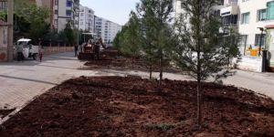 Bağlar Belediyesi'nden ağaç seferberliği