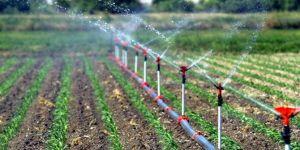 Şanlıurfa'da 481 bin 810 dekar arazi sulandı