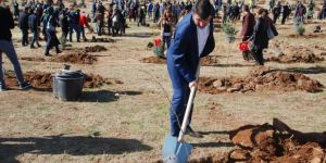 Bitlis'te 123 bin fidan toprakla buluştu