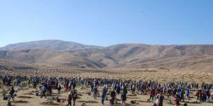 Fidan dikmede Türkiye'nin rekoru tescillendi