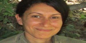 Gri kategoride aranan PKK'li Semra Tunçer Lice'de yakalandı