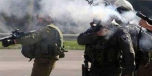 Zionist gangs attack Palestinian citizens and students in al-Khalil city