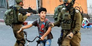 Report: Zionist occupation gangs detained 360 Palestinians in November