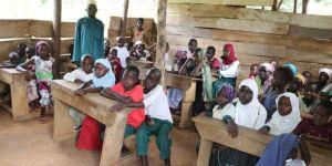 Uganda'da öğrenciler ağaç altında eğitim görüyor