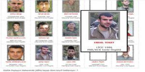 Gri listede aranan PKK'li öldürüldü