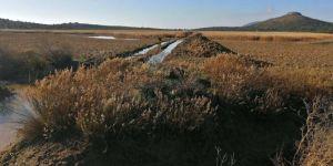 İris Gölü'nde açılan kanallar kapatılacak