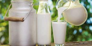 Çiğ süt ve tiftik üretimi destek ödemeleri bugün yapılacak