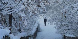 Bitlis'te kar yağışının ardından kartpostallık görüntüler oluştu