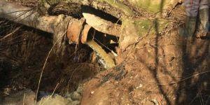 'Dicle Nehri atık sulardan temizlendi'
