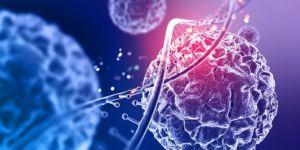 TurkStat releases first biotechnology survey in Turkey