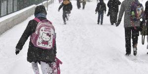 Ağrı'nın Hamur ilçesinde okullar tatil edildi