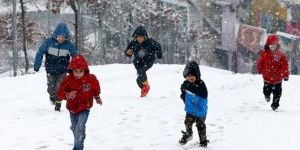 Çınar'da okullara kar tatili