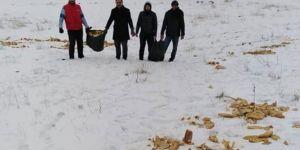 Fırınlardan topladıkları ekmekleri hayvanlar için doğaya bıraktılar