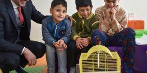 Malatya Büyükşehir Belediyesi rehabilitasyon merkezlerine muhabbet kuşu projesi başlattı