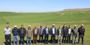 Diyarbakır'da 'Mera Islah ve Amenajman Projesi' kapsamında gübre dağıtımı yapıldı