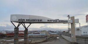 Ağrı'daki hayvan borsası tedbir amacıyla kapatıldı