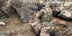 Mardin kırsalında 1 PKK'li öldürüldü