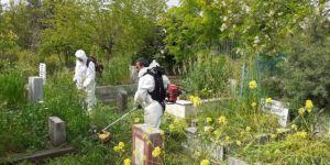 Diyarbakır Büyükşehir Belediyesinden mezarlıklarda yabani ot temizliği