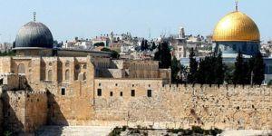Palestinian Scholars Abroad calls for emergency meeting