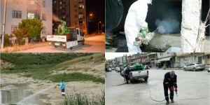 Adana'da sivrisinekle mücadele çalışmaları devam ediyor