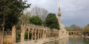 Şanlıurfa'da 7 yerleşim yeri karantinaya alındı