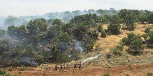 Nusaybin'de orman yangını