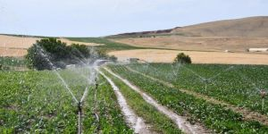Elazığ'da 114 bin 980 dekar tarım arazisi sulanmaya başladı