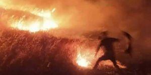 Çınar Avdalı'da çıkan arazi yangında 70 dönümlük tarla zarar gördü